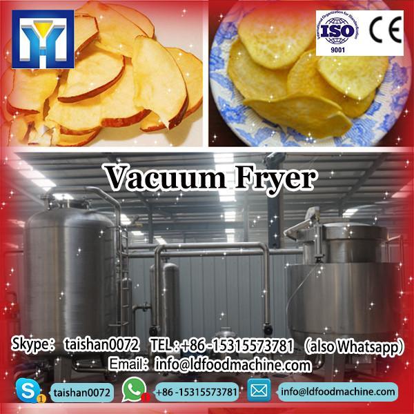 LD fryer for potato sticks, potato chips